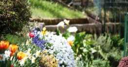 Gartentypen nach Bepflanzung