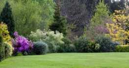 Den richtigen Gartentyp finden