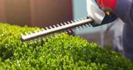 Elektrische und benzingetriebene Gartengeräte