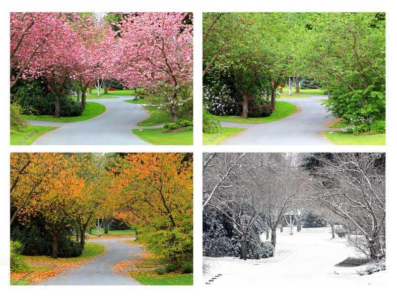 Jahreszeiten im Garten