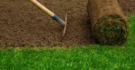 Wie lege ich einen Rasen an?