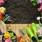 Bodenvorbereitung & Aussaat