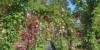 Gartentypen nach Stil