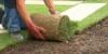 Einen Rasen erneuern